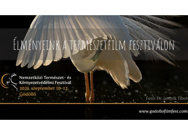 Our experiences at Nature and Environmental Protection Festival