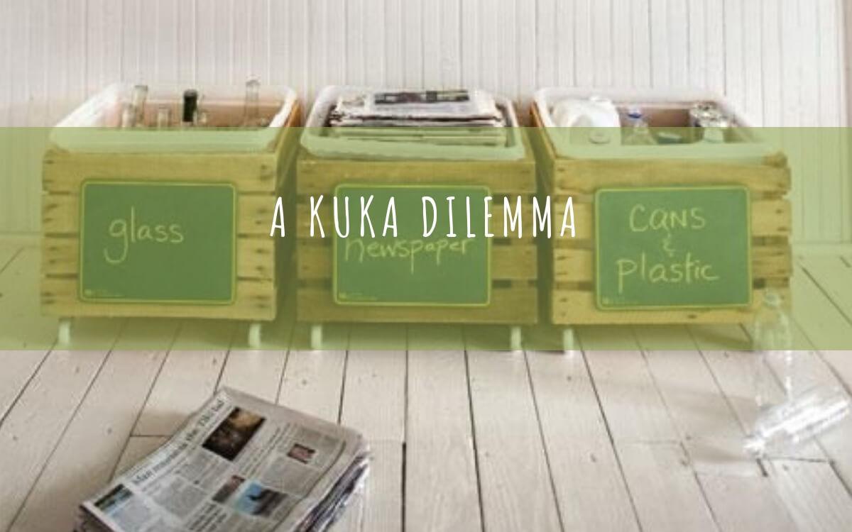 The trash bin dilemma