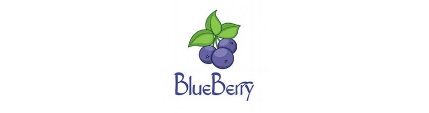 Blueberry Cosmetics