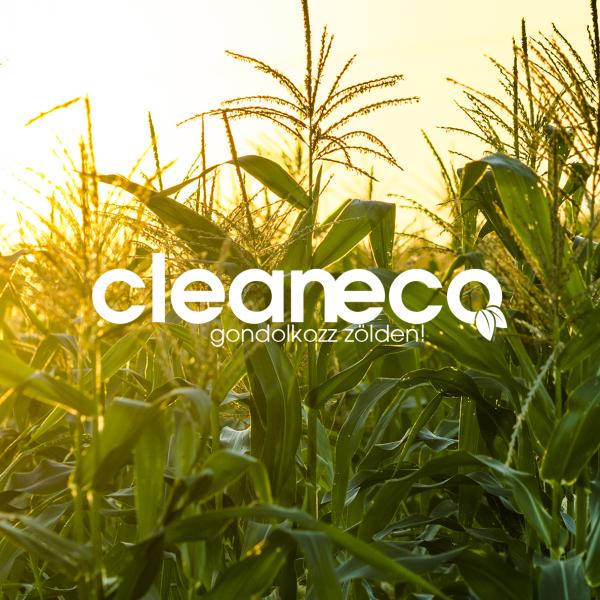 Cleaneco Vízkőoldó, 0,5 L