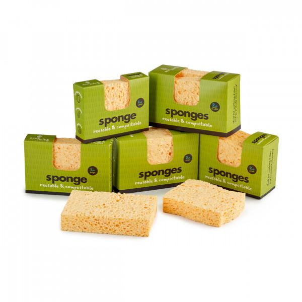Compostable UK Sponge Wavy 2 Pack