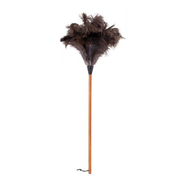 Ostrich feather duster with waxed beechwood handle